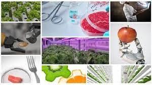 ICEX lanza el primer Desafía vertical para empresas del sector FoodTech