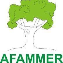 AFAMMER