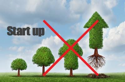 ¿Por qué tu start up no crece?